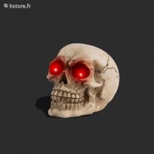 Crâne en polyrésine