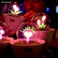 Lampe c?ur et I Love
